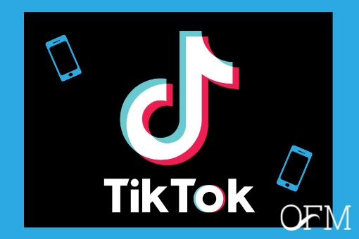 TikTok for Businesses